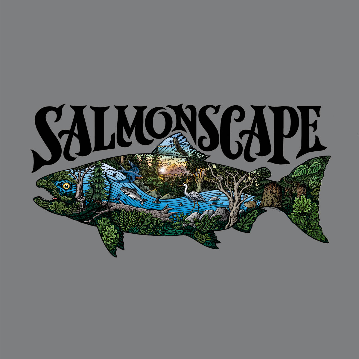 590 - Salmonscape