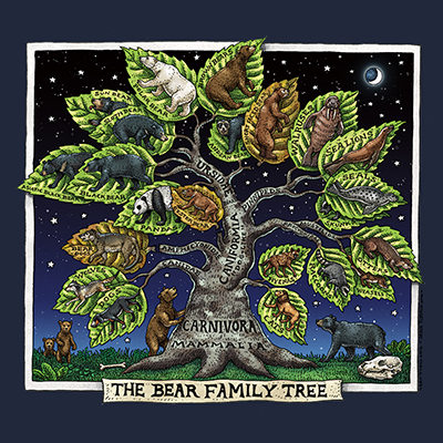 602 - Bear Family Tree