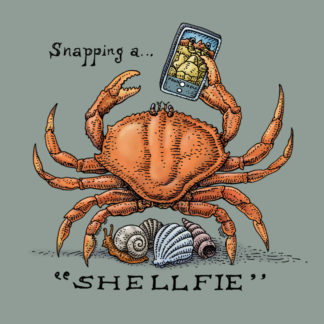 611 - Shellfie
