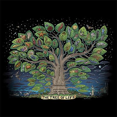 585- Tree of Life